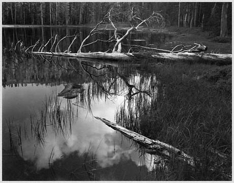 Ansel Adams - Siesta Lake